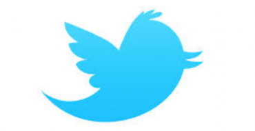 Tweet – The Chirp Of a Small Bird That Can Be Heard