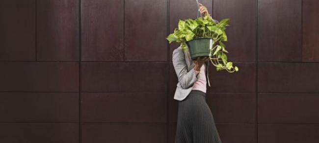 Four Strategies for Responding to Sustainability-Oriented Competitors: INSEAD