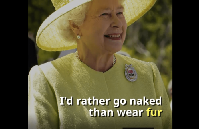 "Getting the Queen to almost say ""I'd rather go naked than wear fur"" and brands on social trends"