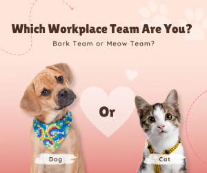 Which Workplace Team Are You?